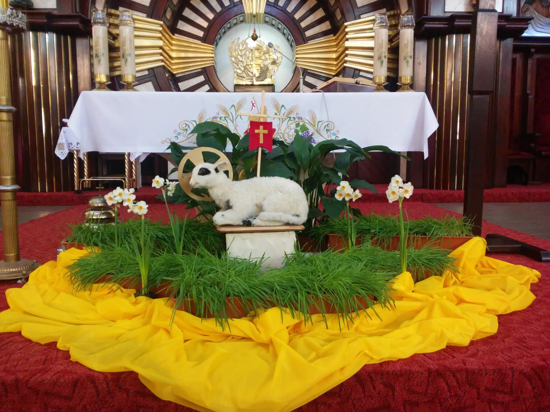 świąteczny Wystrój Naszego Kościoła Parafia Pilczyce